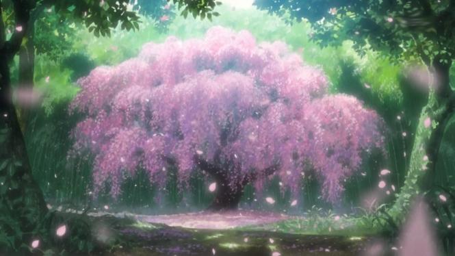 anime-cherry-blossom