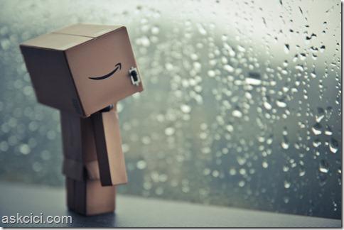 raining-Danbo-1