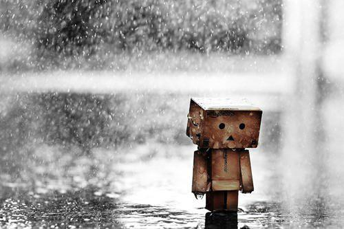 walking alone in rain (3)